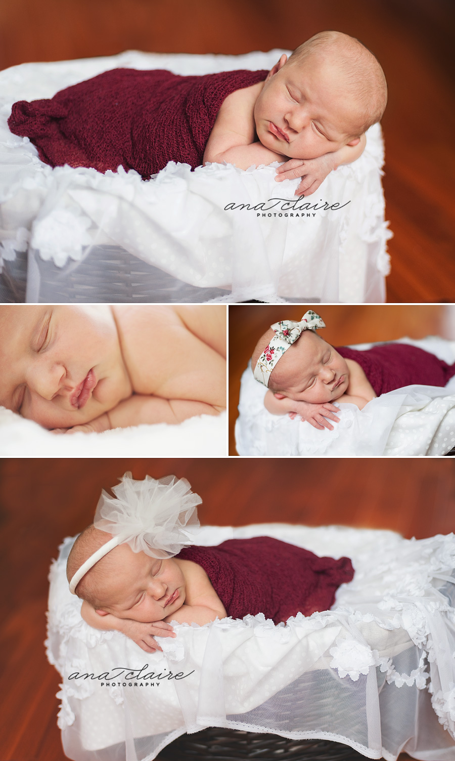 Door County Newborn Photographer