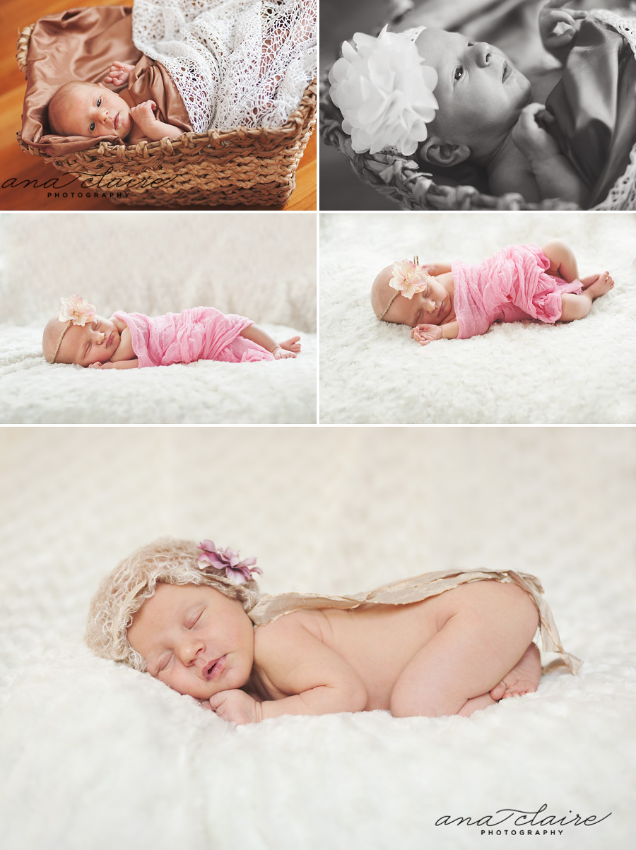 De pere newborn photographer