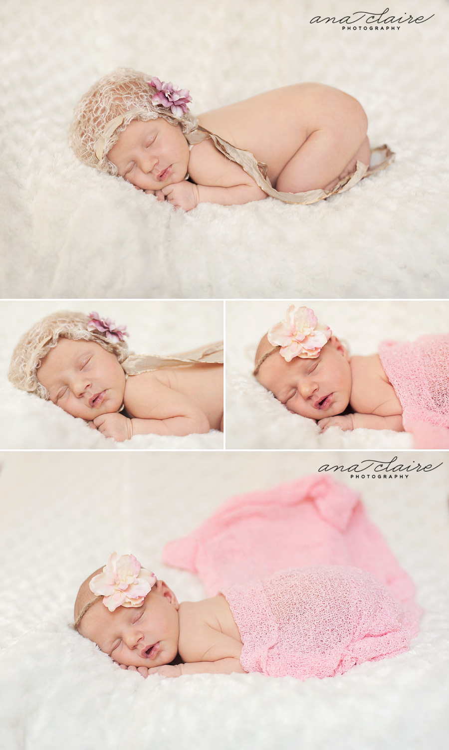 Sturgeon Bay Newborn Photographer